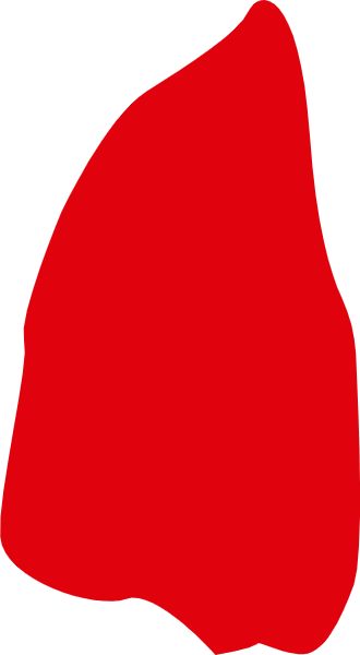 印章红色矢量不规则形状装饰元素贴纸素材