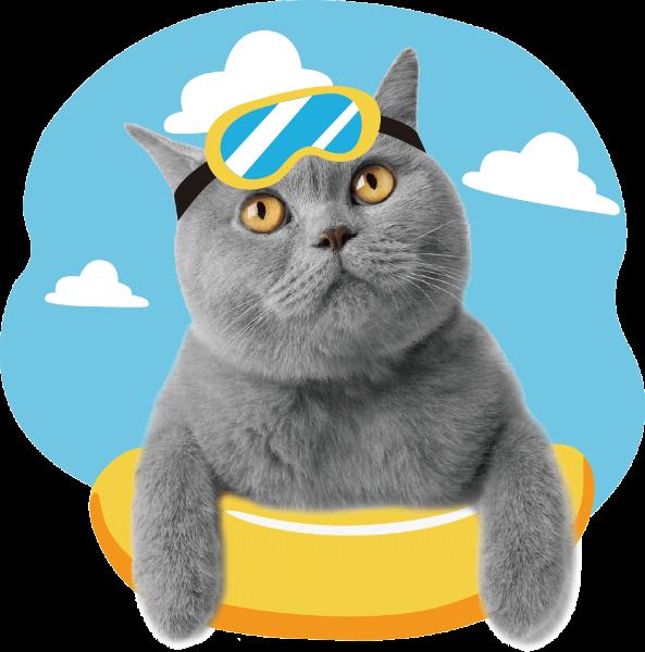 猫咪猫蓝猫呆萌贴图贴纸素材