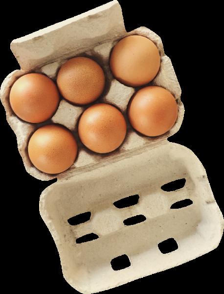 鸡蛋抠图照片实物产品贴纸素材