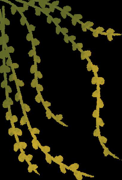 树叶叶子植物橄榄枝剪影贴纸素材