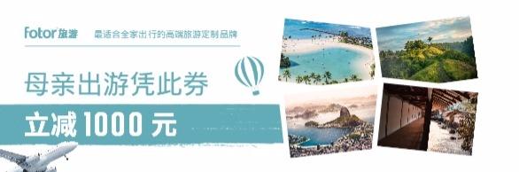 母亲节父母高端定制旅游优惠券设计模板素材
