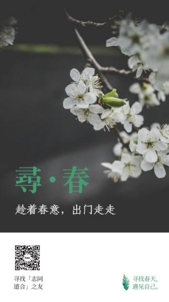 梨花开春天到手机海报