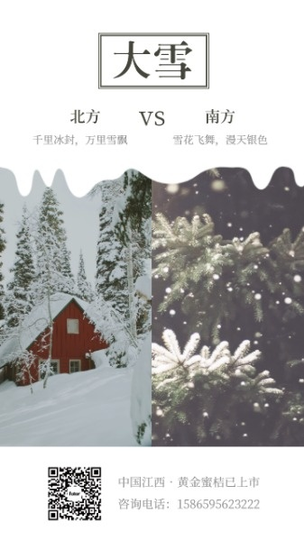节气大雪海报设计模板素材