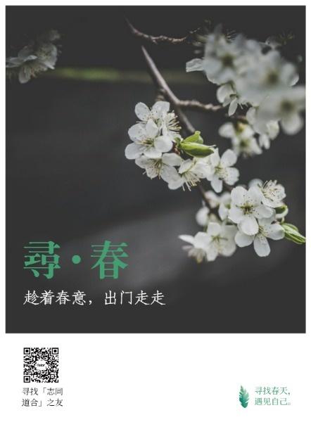 寻春踏青海报
