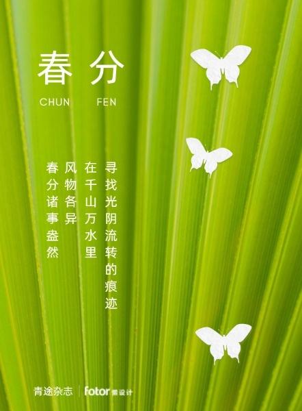 绿色简约传统24节气春分海报设计模板素材