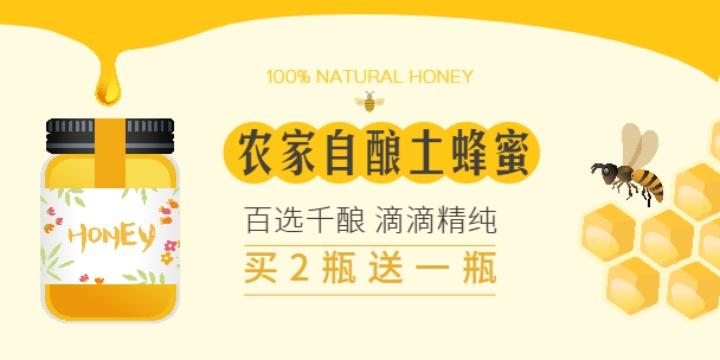 农家自酿土蜂蜜买2赠1