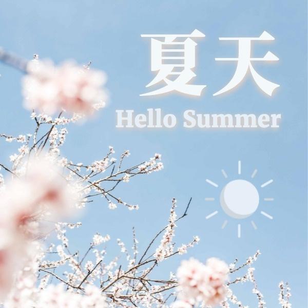小清新夏天