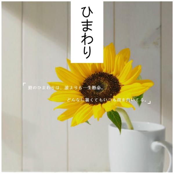 黄色简约夏日向日葵帖子