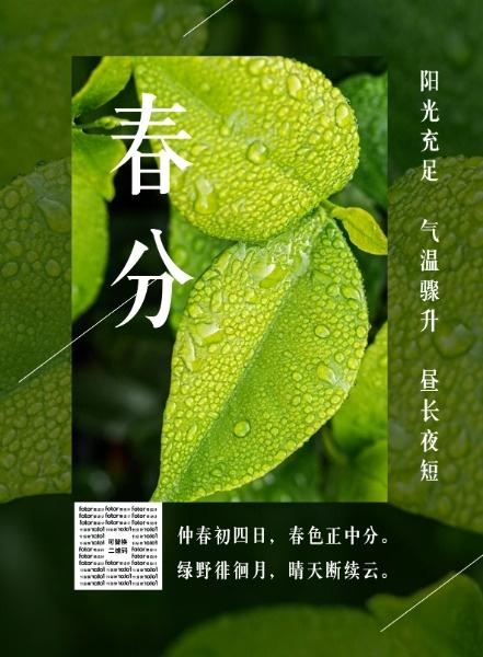传统文化二十四节气春分