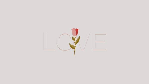 浪漫爱情玫瑰花