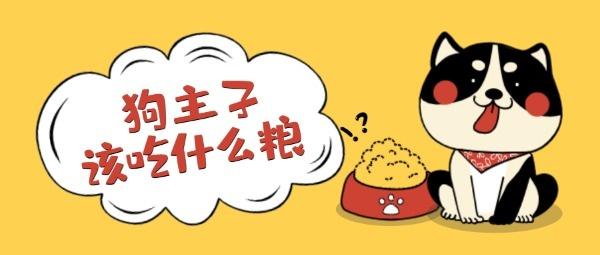 黄色卡通宠物狗粮