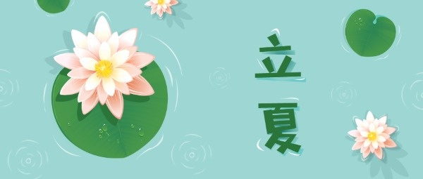 传统文化24节气立夏荷叶池塘
