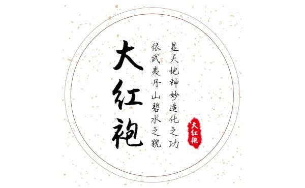 中国风简约大红袍