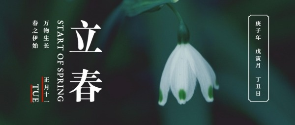 绿色中国风节日节气立春