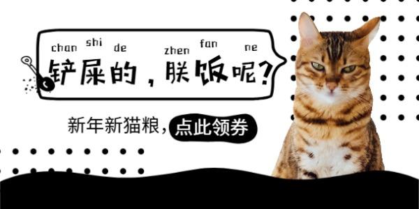 新年猫粮促销活动