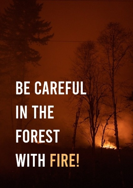 Summer Forest Protection
