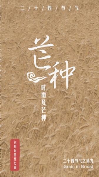 传统24节气芒种