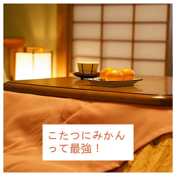 橙色日式家居主题海报