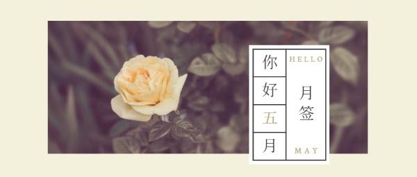 五月月签小清新春夏