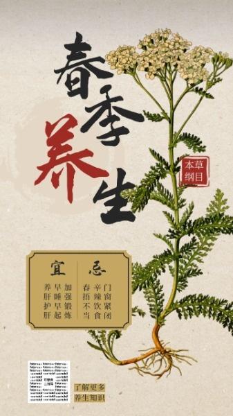 褐色中国风春季养生
