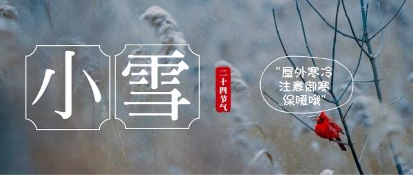 传统文化二十四节气小雪