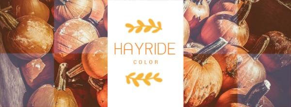 橙色秋日主题封面