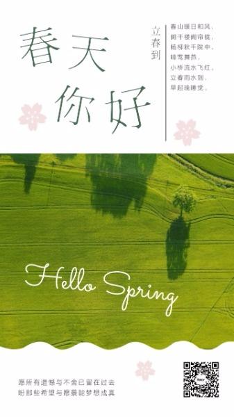 绿色图文传统节气立春