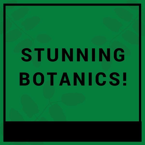 绿色简约植物商店图标