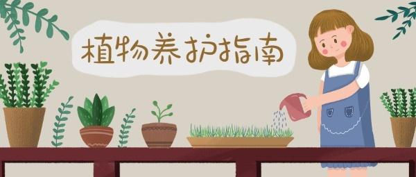 植物养护指南