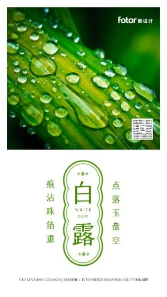 绿色中式白露节气日签
