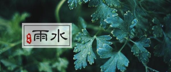 传统文化24节气雨水公众号封面大图