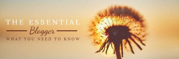 你需要知道的最基本的博客