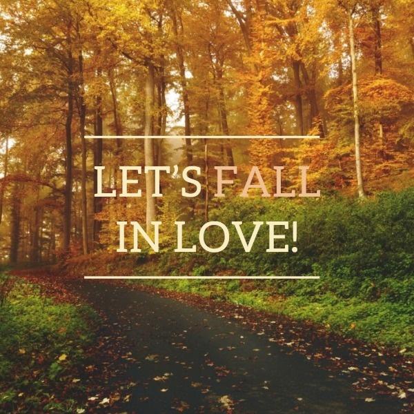 Simple Bumper Autumn