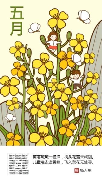 五月油菜花开