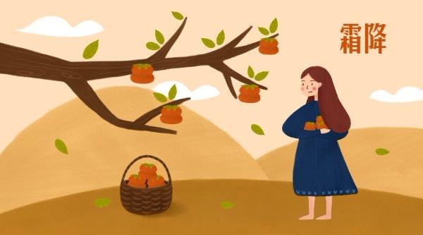 霜降节气女孩捡柿子
