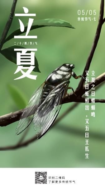 传统文化24节气立夏蝉树叶手绘
