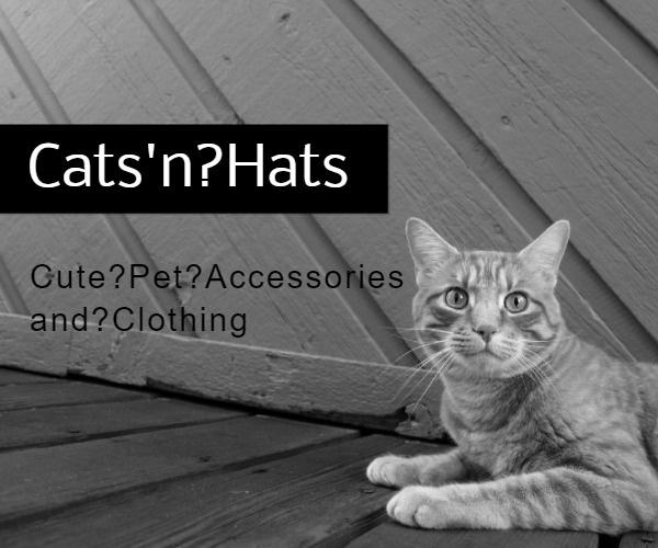 Cats'n Hats
