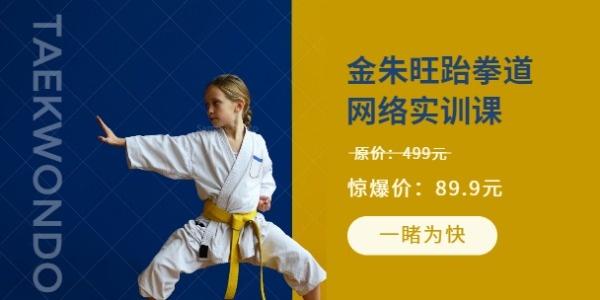 跆拳道培训网教课程