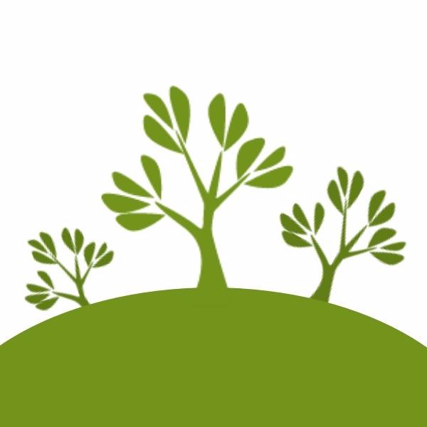 绿色插画植树节