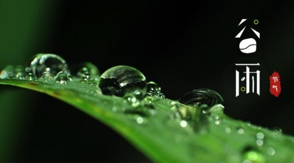 24節氣谷雨