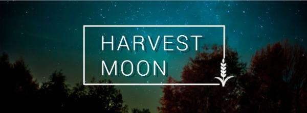 藍色夜月主題封面