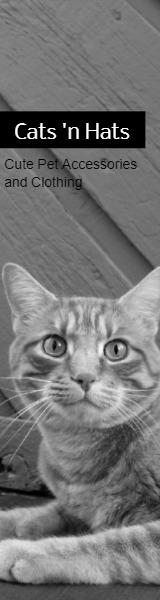 Cats'nHats
