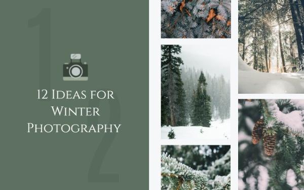 冬日摄影视频封面