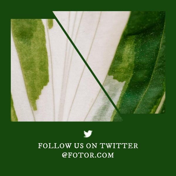 Simple Social Follow