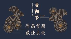 登高賞菊重陽節秋游