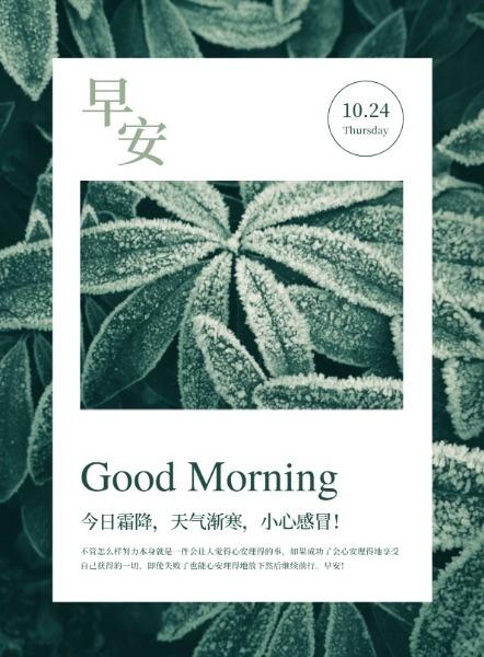 绿色小清新传统节气霜降