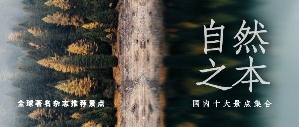 自然森林景觀