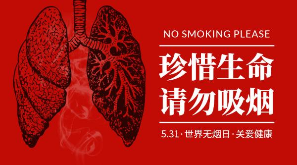 531禁烟吸烟健康吸烟肺