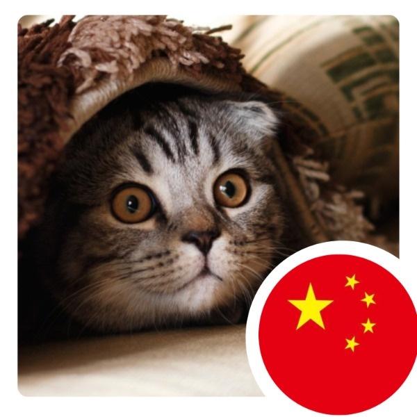 国庆节国旗微信头像