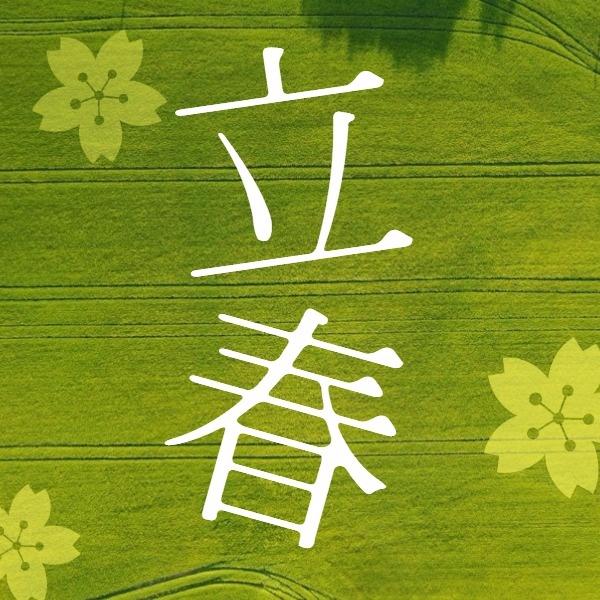 绿色花朵元素立春矢量图